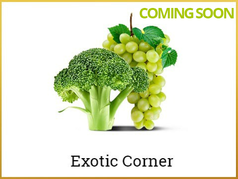 neareshop_All_Exotics-coming-soon