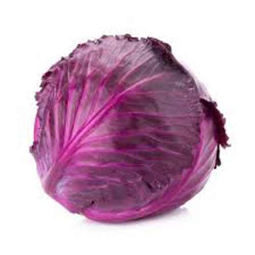 Cabbage-Red-1kg